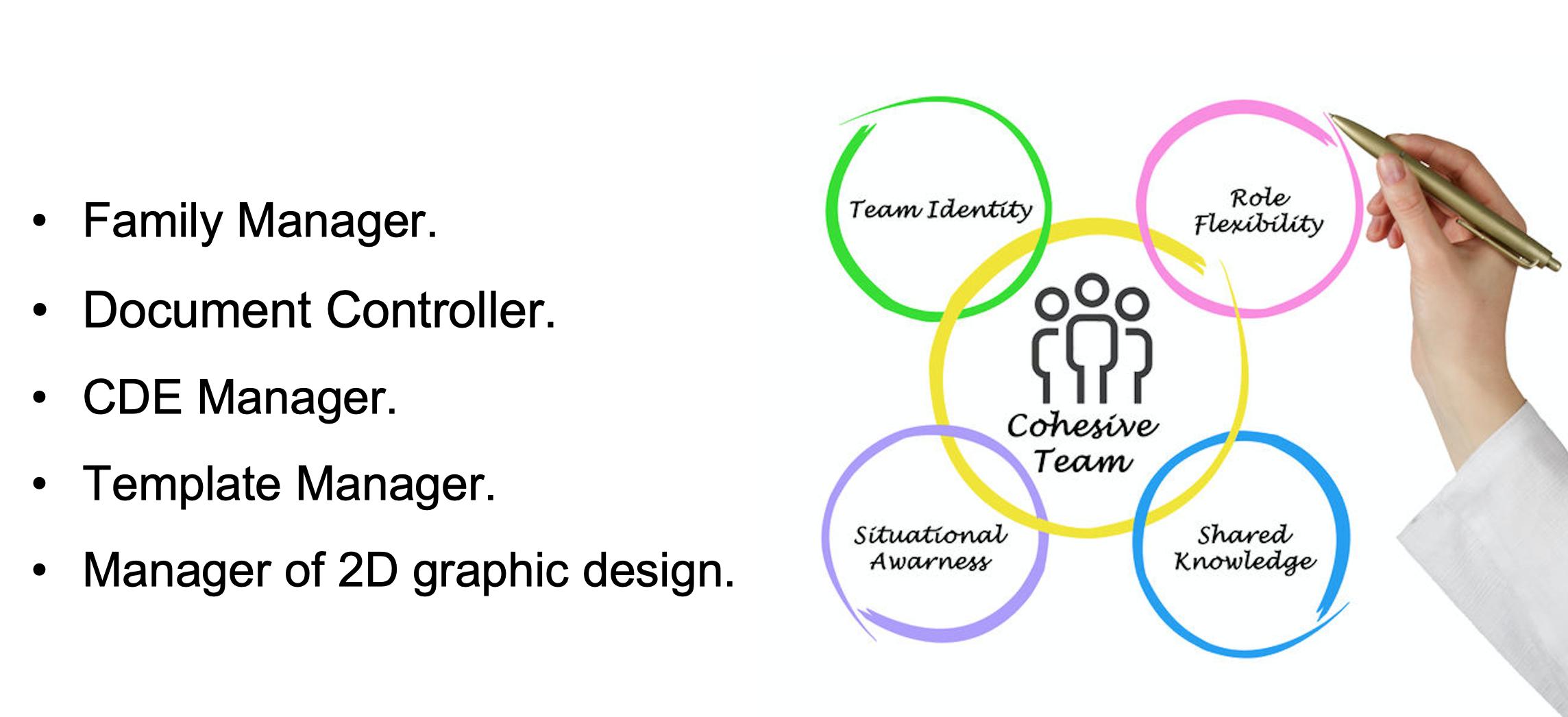 Figura 7: I ruoli Bim destrutturati all'interno del team.